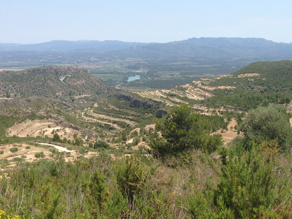 Cycling from El Pinell de Brai to Miravet 5
