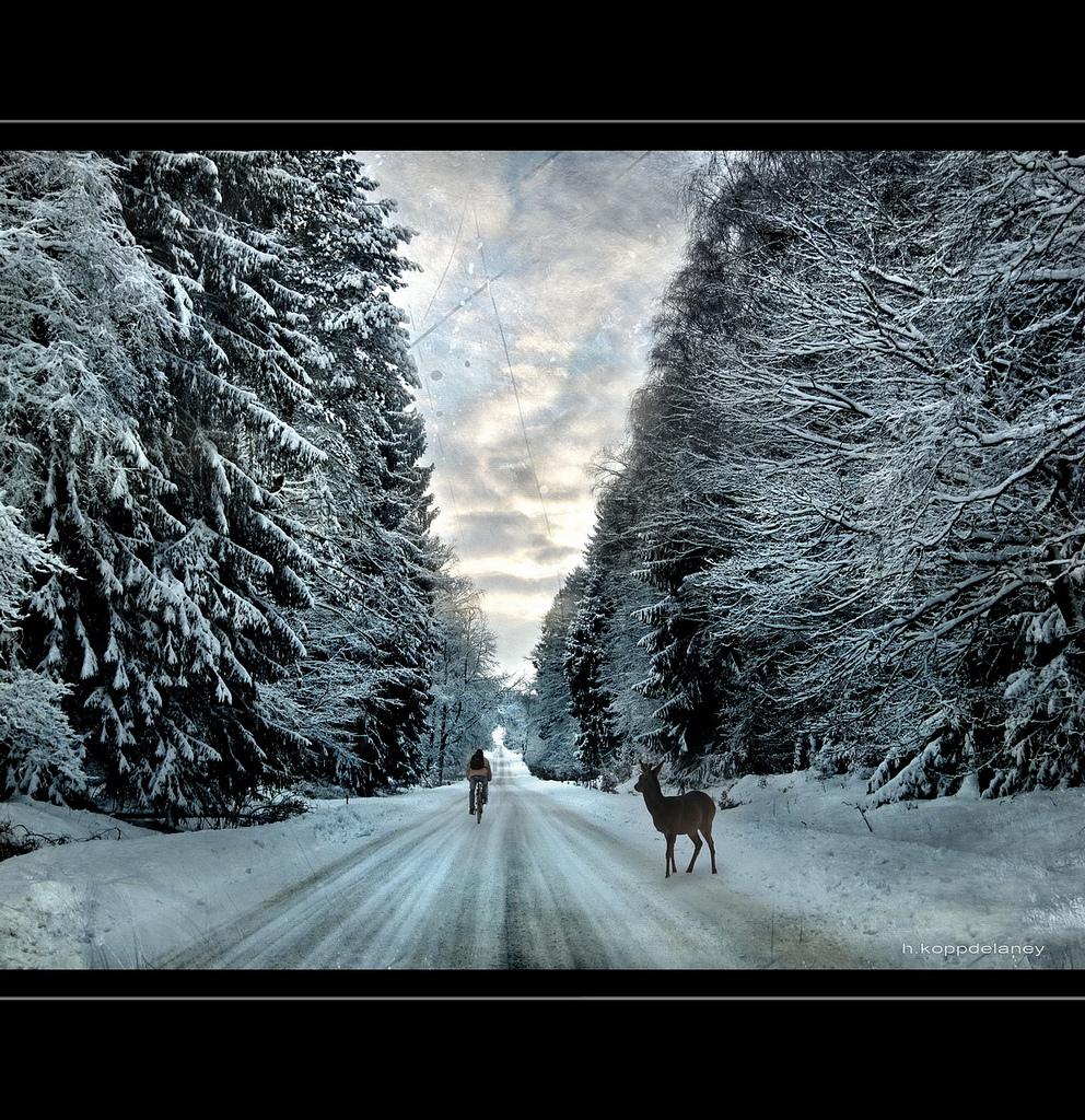 Deer Pass